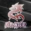 [DrakeTeam] Multigaming Discord et Teamspeak Communautaire. - dernier message par iCrazy