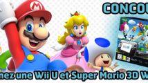 Concours Wii U Super Mario 3D World : les gagnants