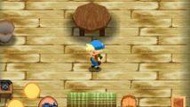 Test : Harvest Moon DS (DS)