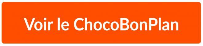 """Résultat de recherche d'images pour """"voir le chocobonplan"""""""