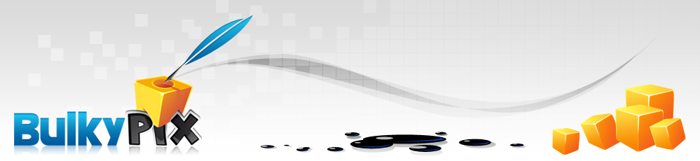 Bulkypix, le pixel petit mais costaud