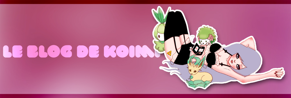 Le blog de Koimi