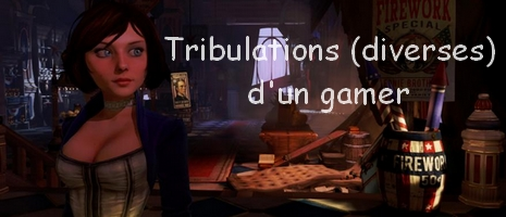 Tribulations d'un gamer