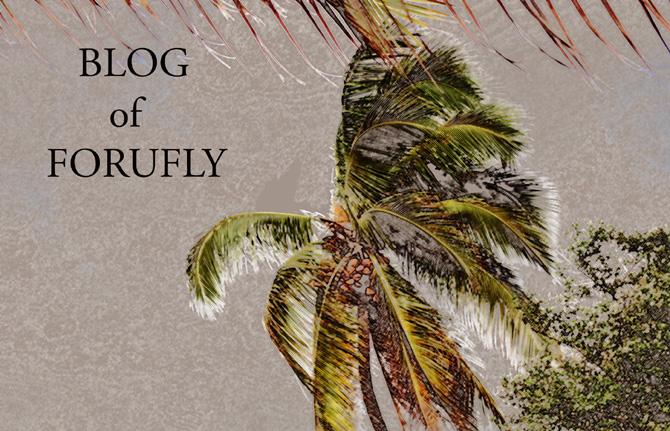Le Blog de forufly