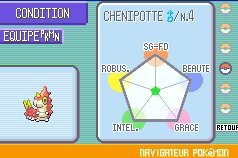 PokemonSaphir GBA Div 008
