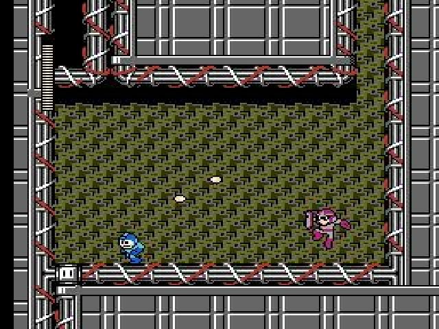 MegaMan3 NES Editeur 004