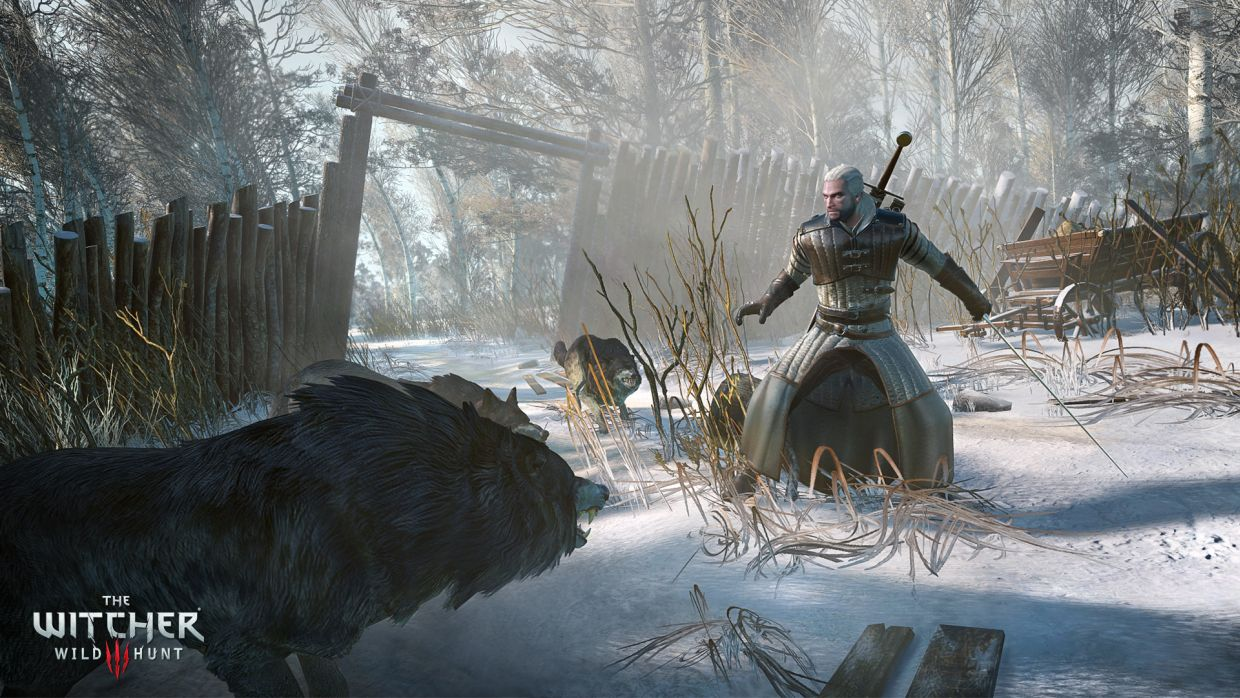 TheWitcher3-WildHunt Multi Editeur 051