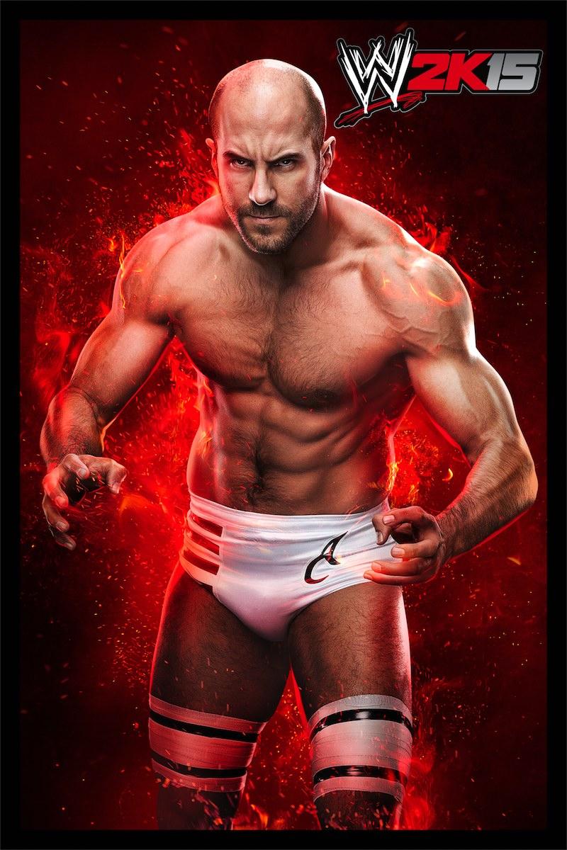 WWE2K15 Multi Visuel 002