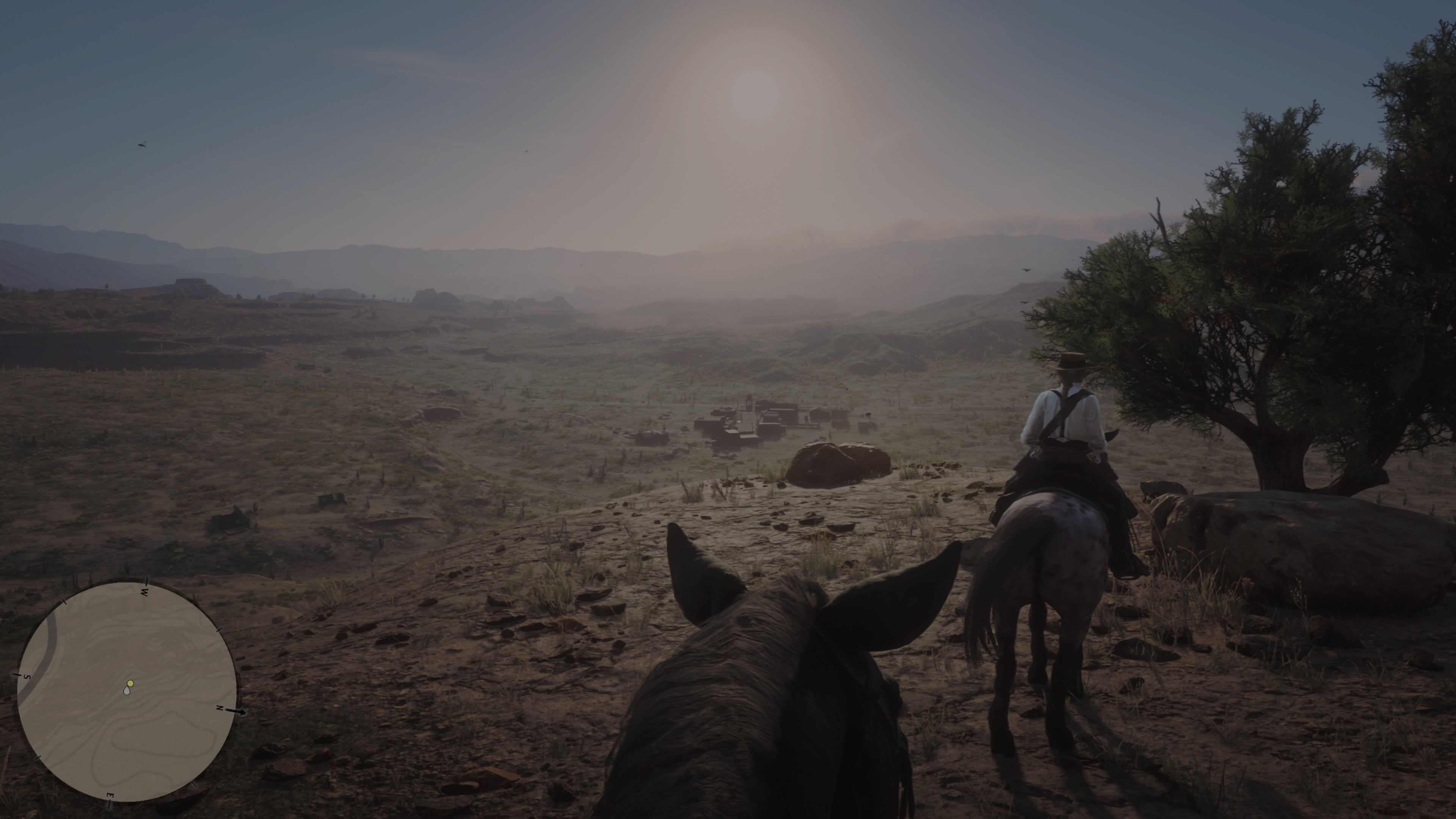 RedDeadRedemptionII PS4 Test 060