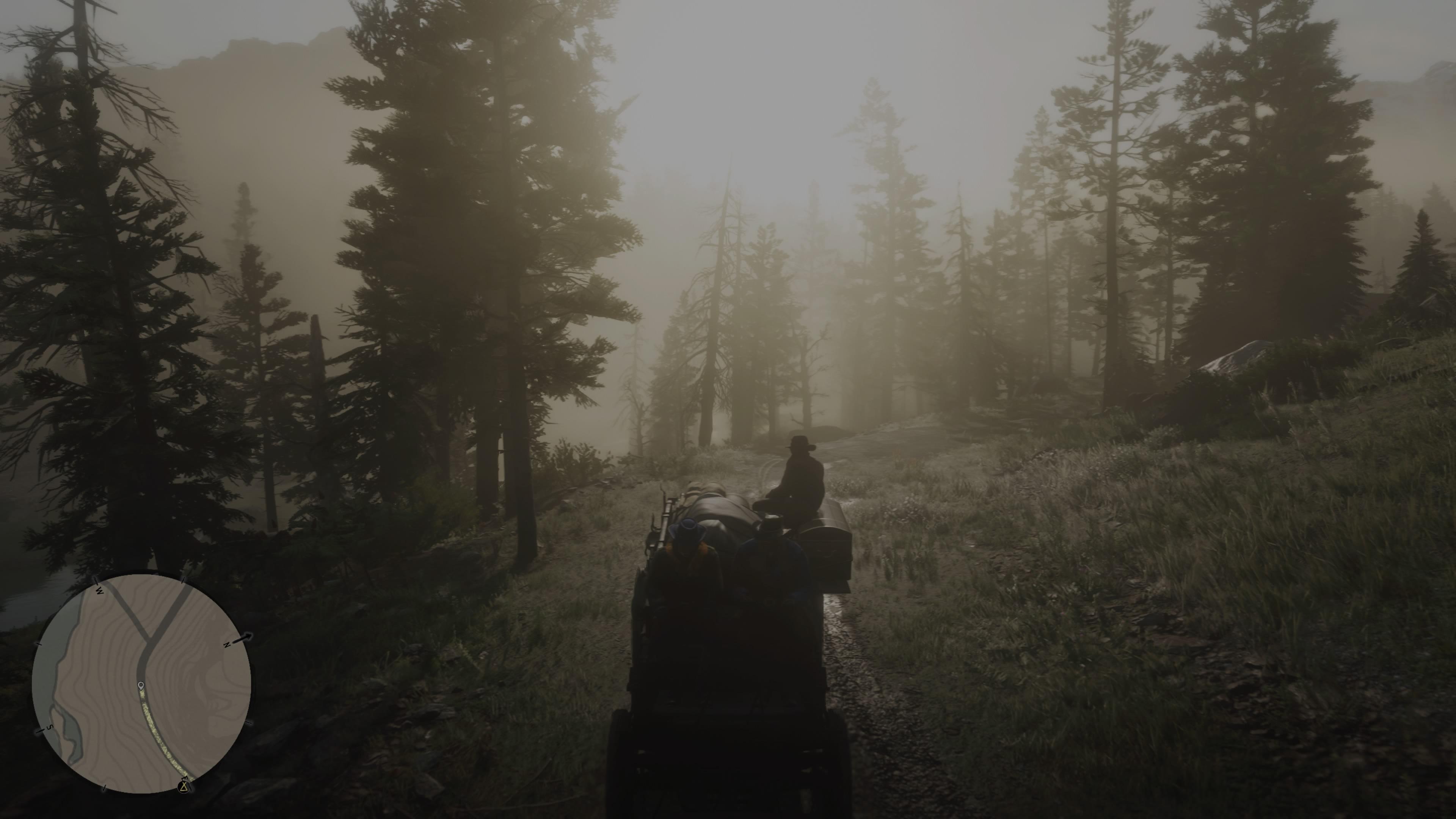 RedDeadRedemptionII PS4 Test 078