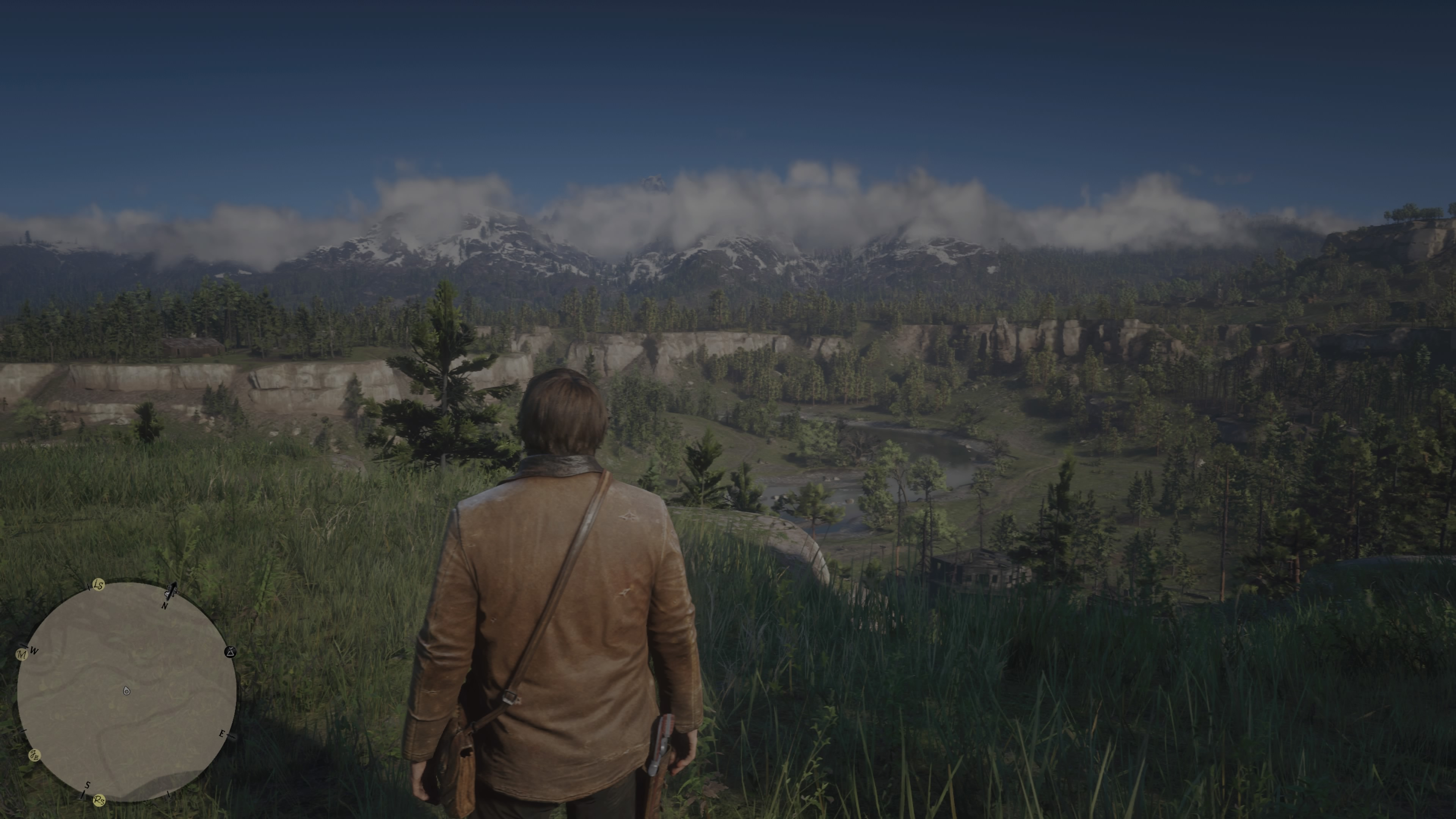 RedDeadRedemptionII PS4 Test 092