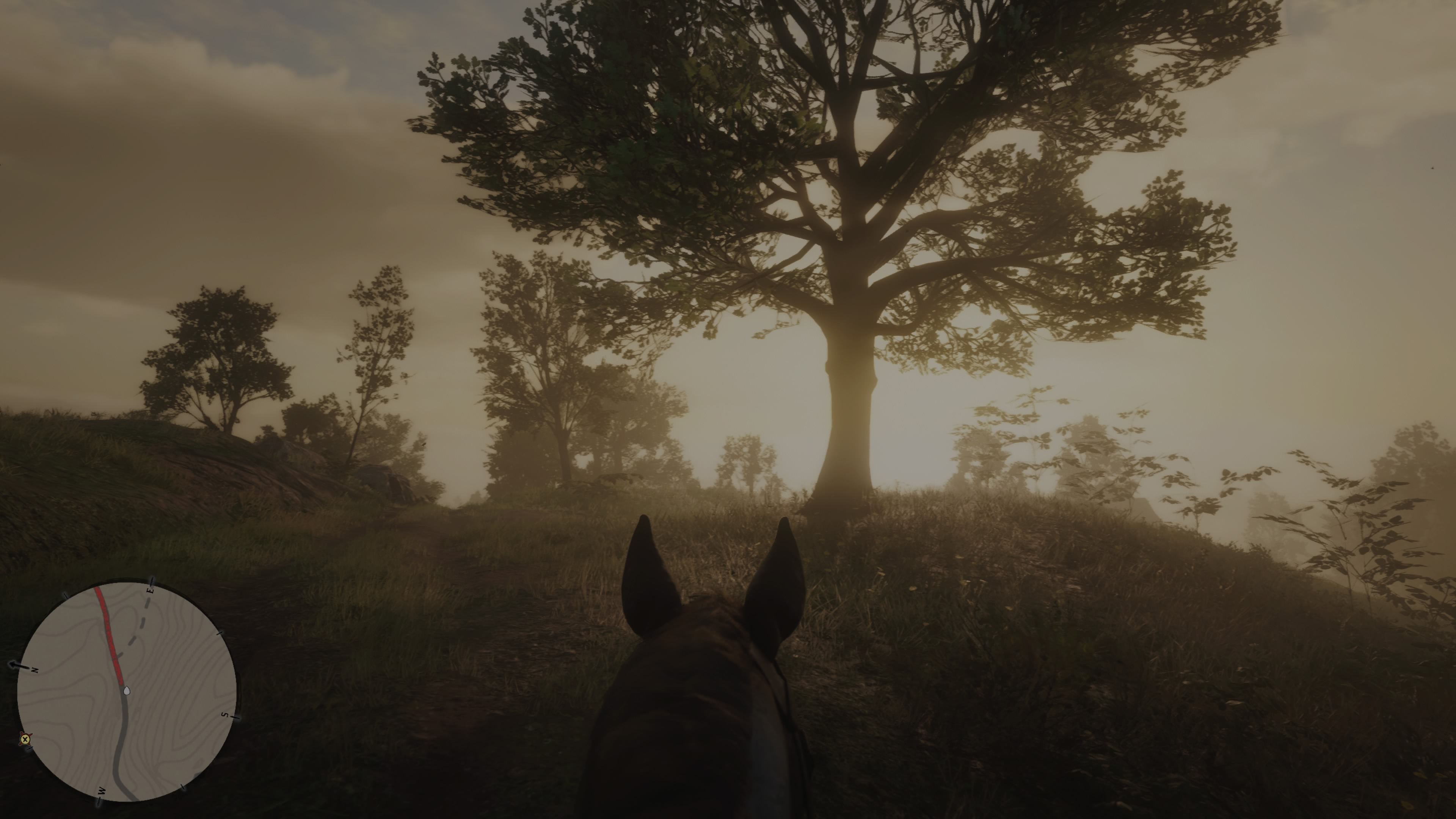 RedDeadRedemptionII PS4 Test 112