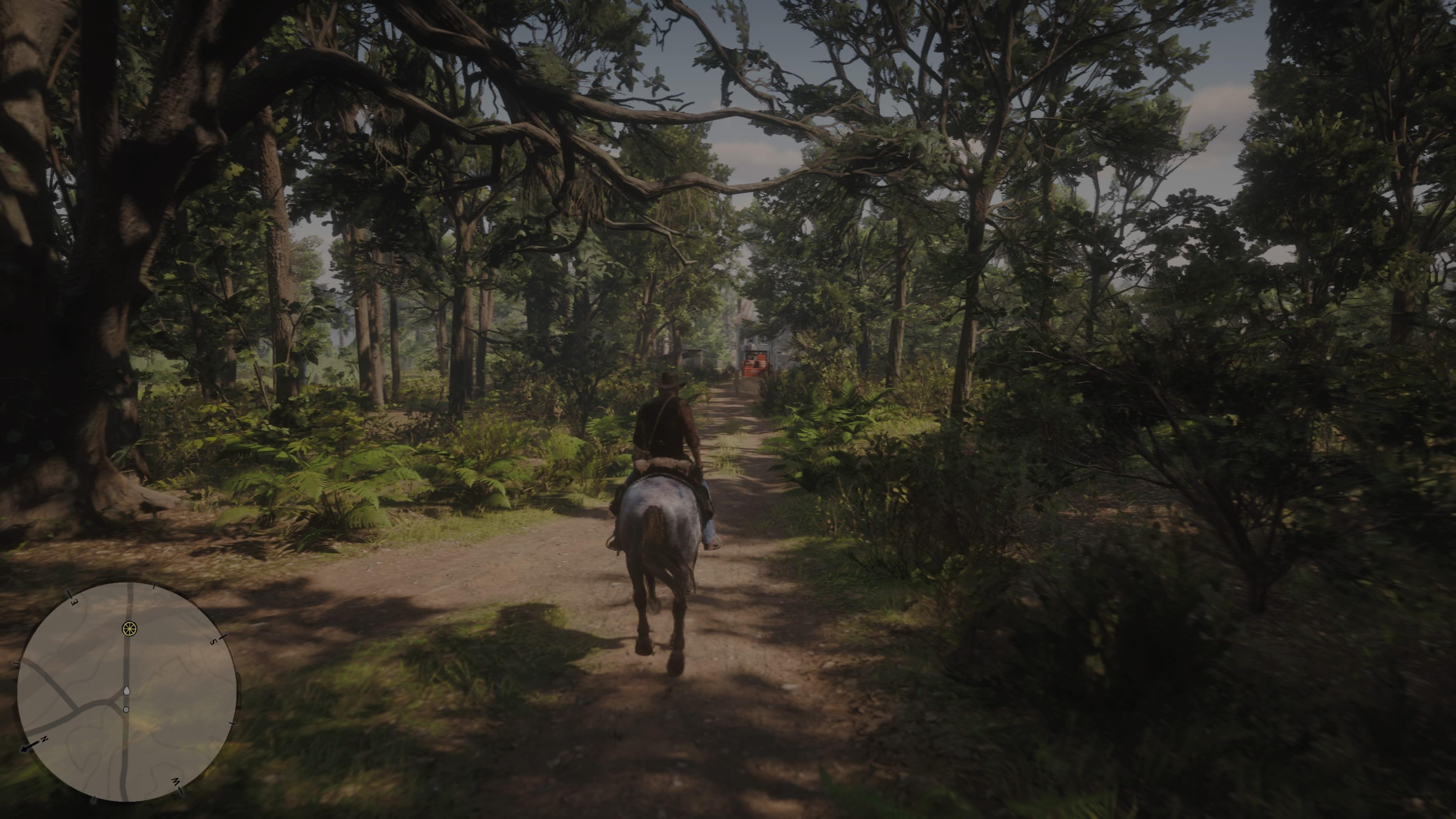 RedDeadRedemptionII PS4 Test 120
