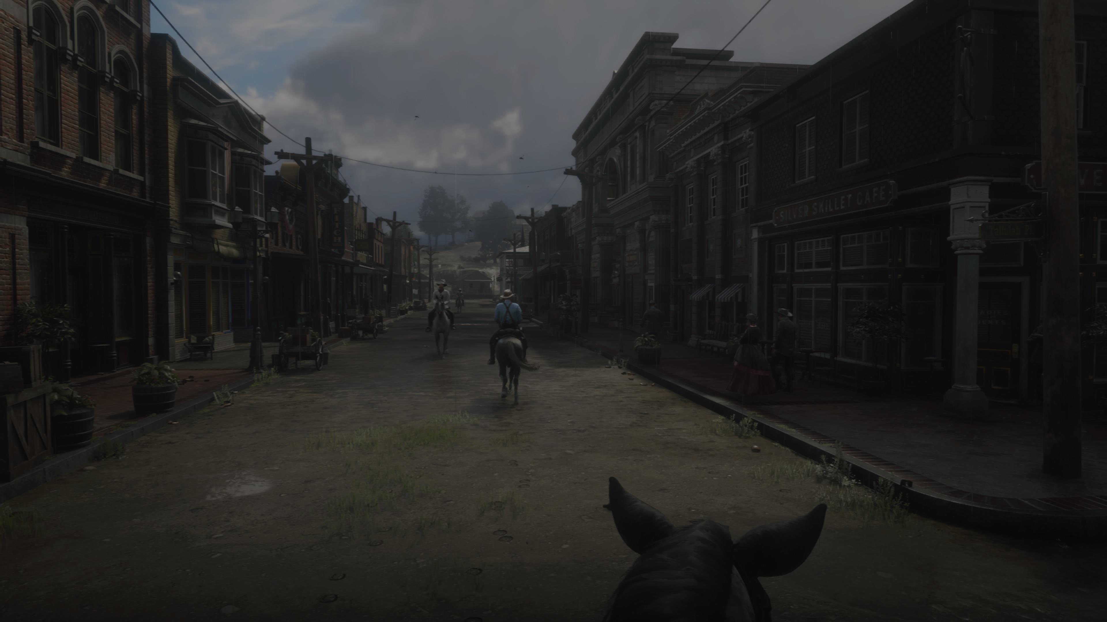 RedDeadRedemptionII PS4 Test 141