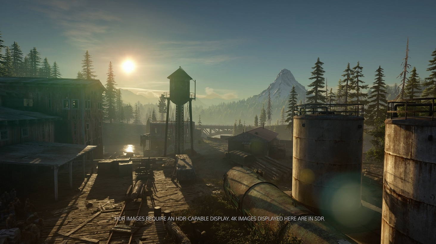 DaysGone PS4 Editeur 015