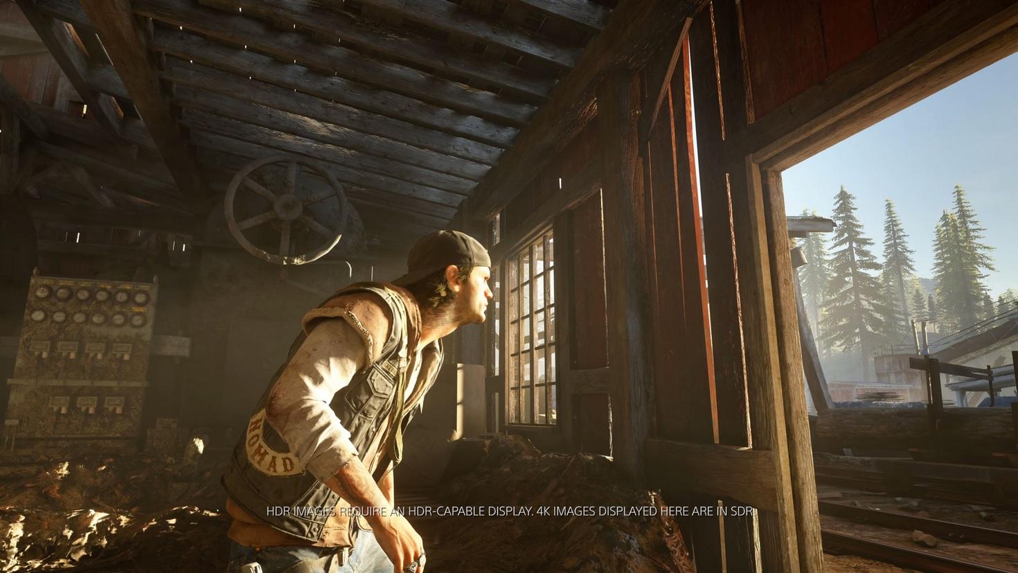 DaysGone PS4 Editeur 016