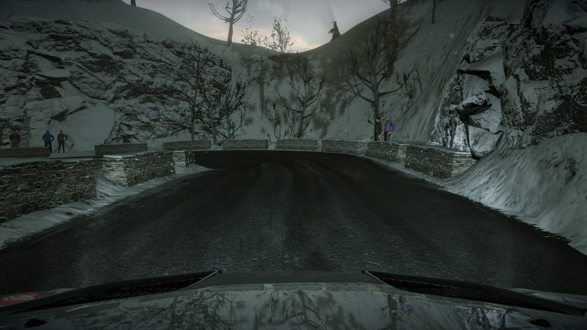 WRC7 Multi Test 018
