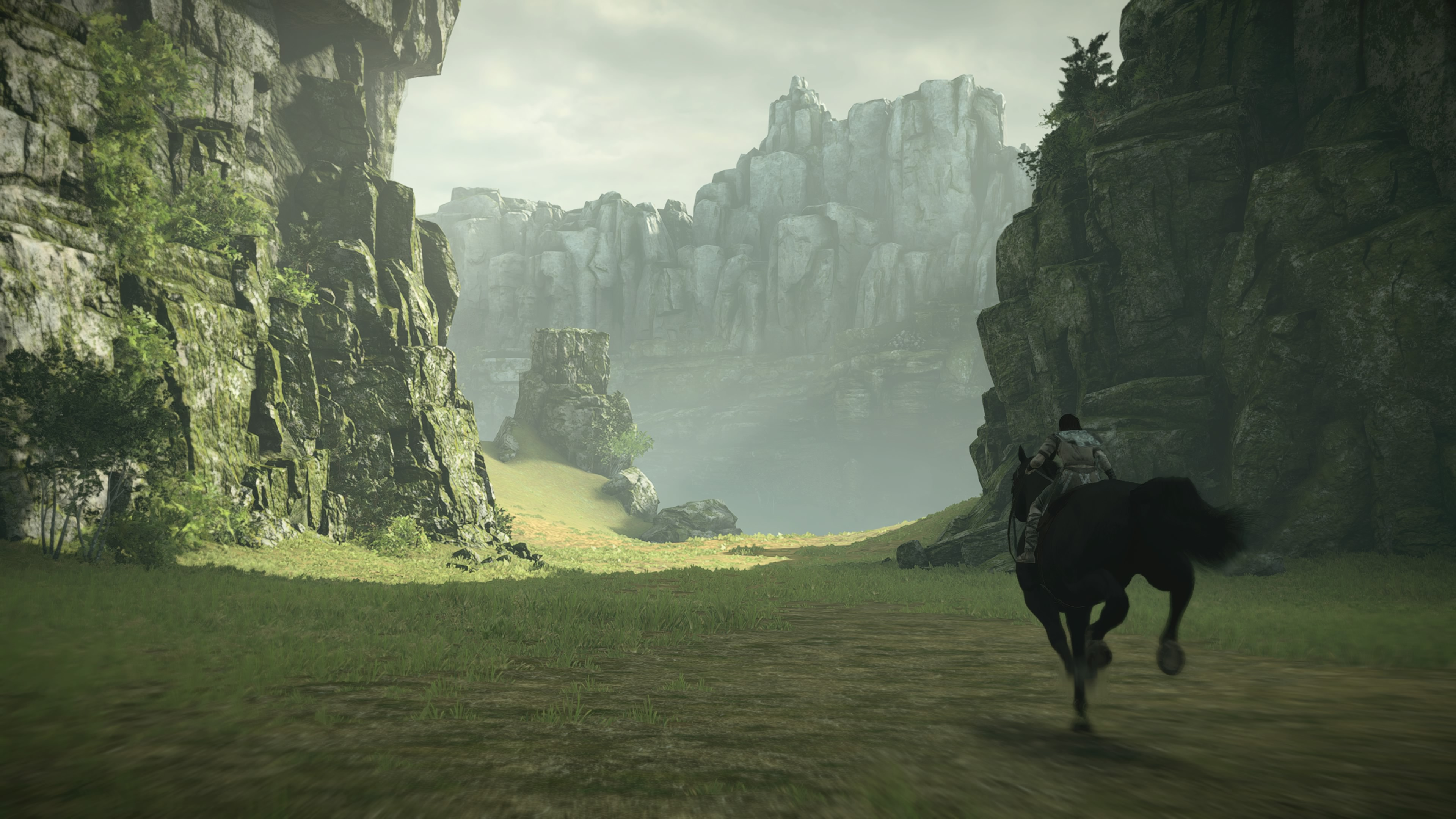 ShadowoftheColossus PS4 Test 021