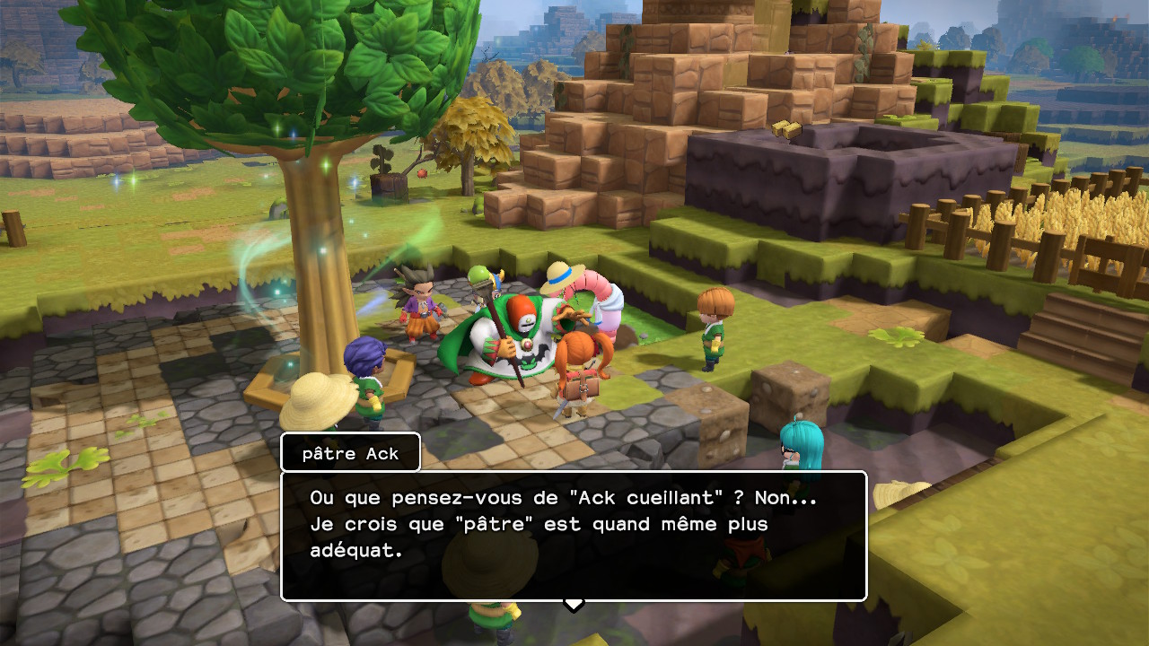 DragonQuestBuilders2 Switch Test 008