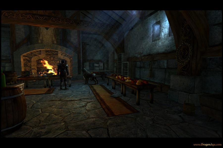 Dragon Age Multi Ed028