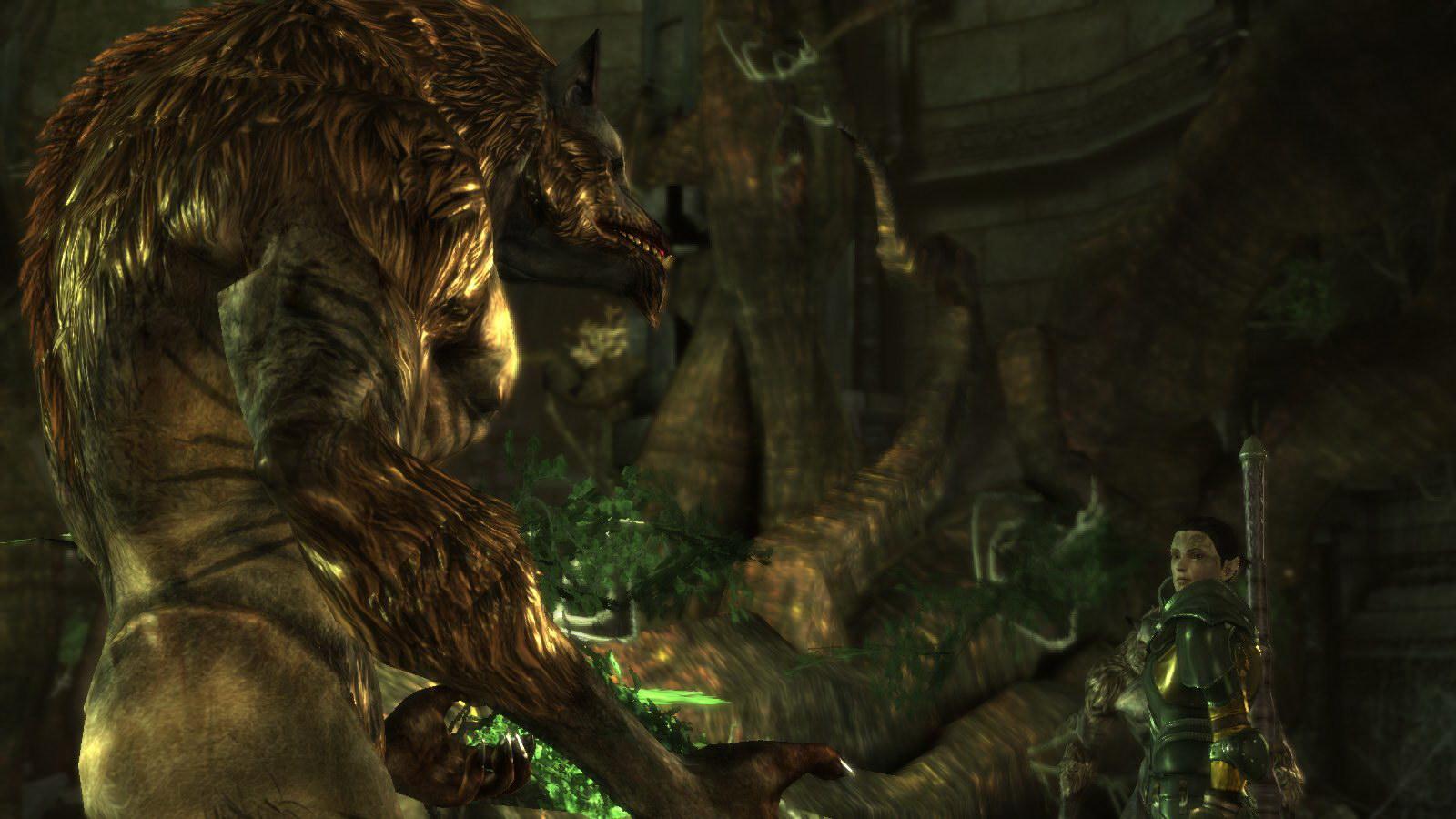 Dragon Age Multi Ed054