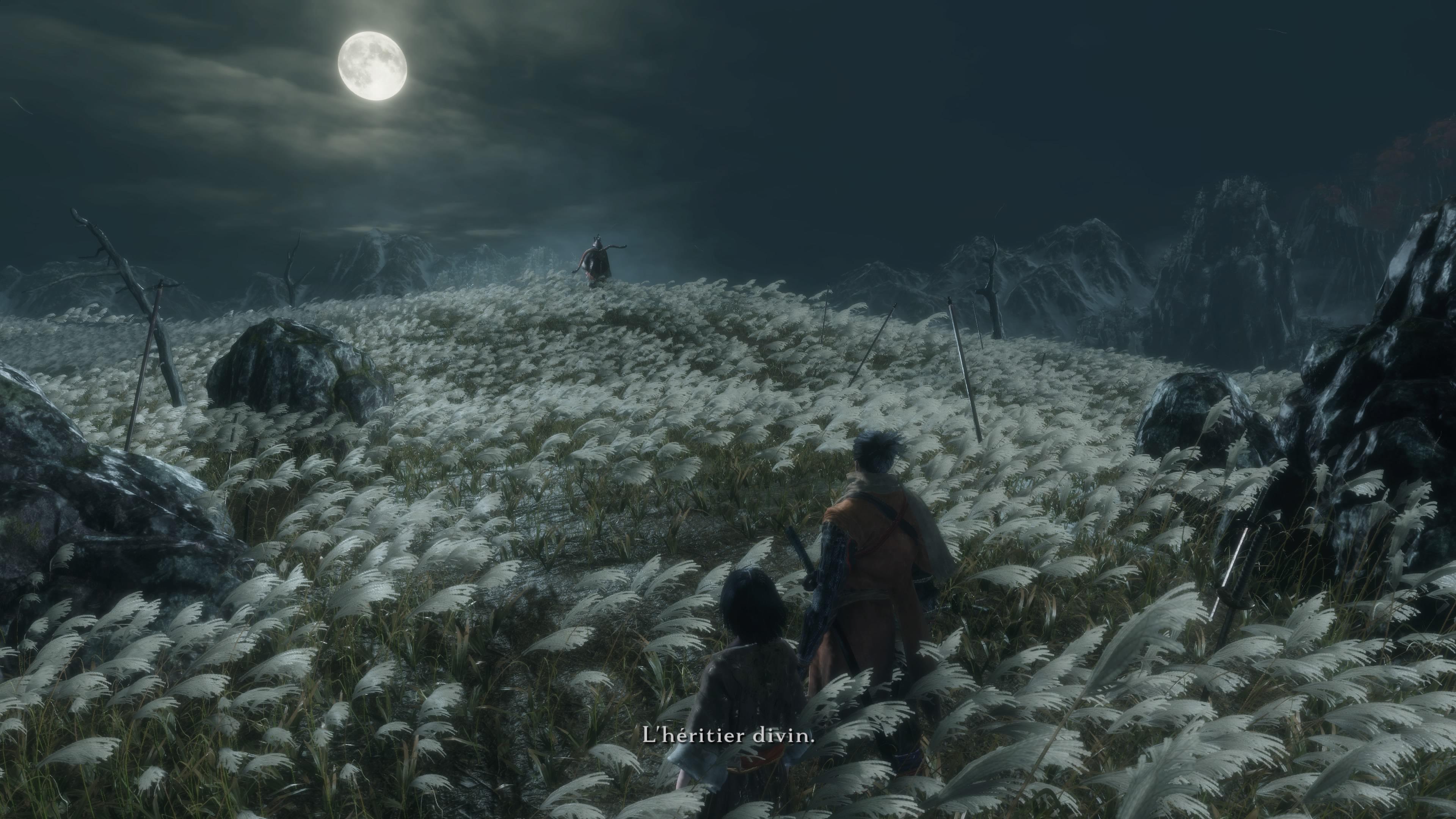 Sekiro-ShadowsDieTwice PS4 Test 002