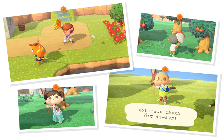 AnimalCrossing-NewHorizons Switch Editeur 018
