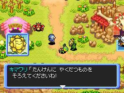 PokemonDonjonMystere DS Editeur003