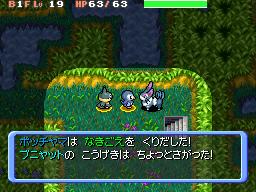 PokemonDonjonMystere DS Editeur007