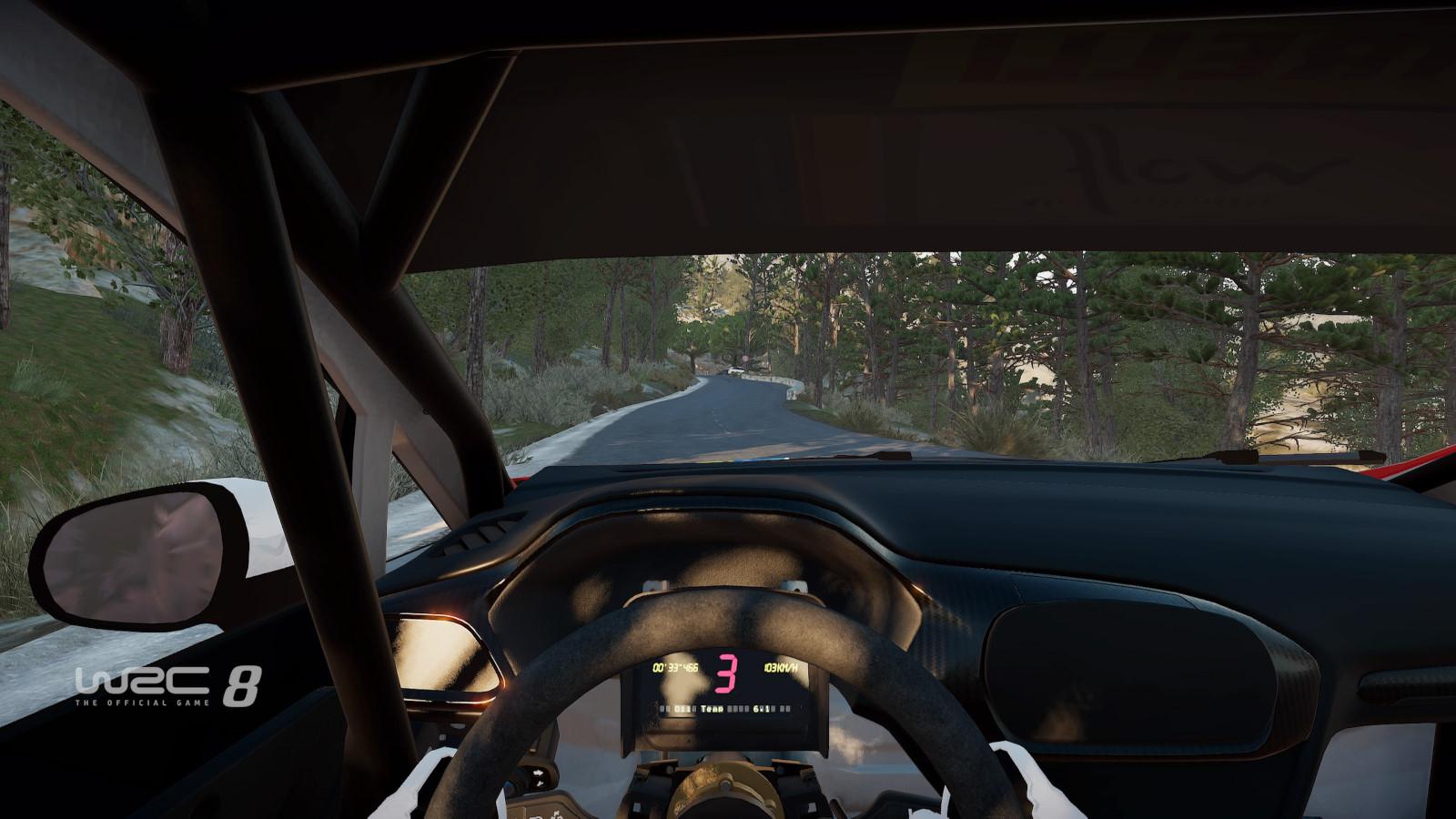 WRC8 PS4 Test 010