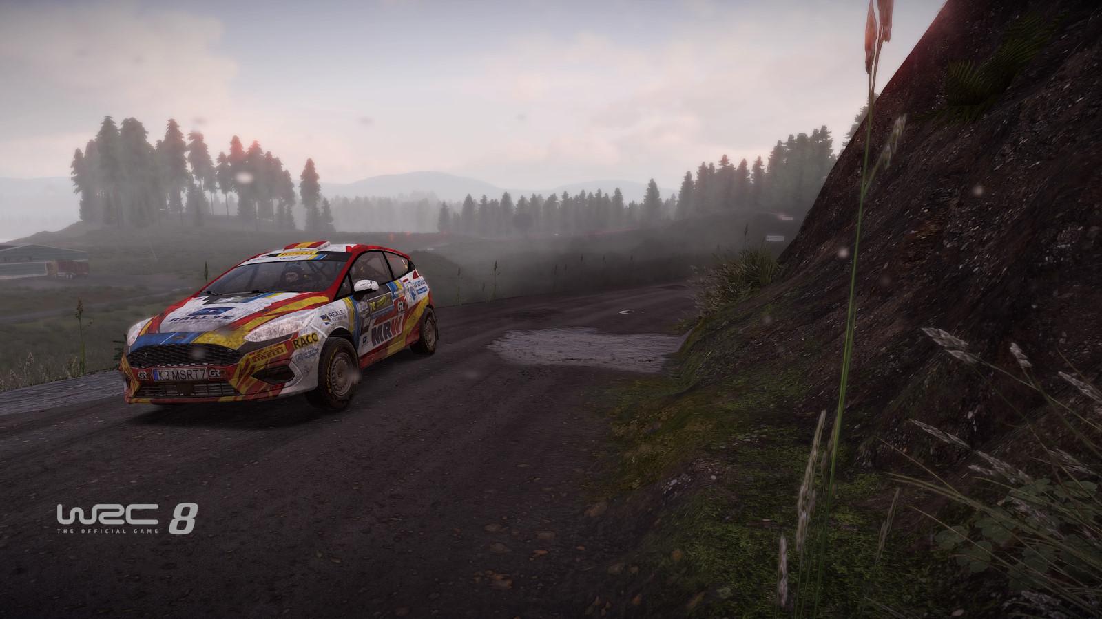 WRC8 PS4 Test 016