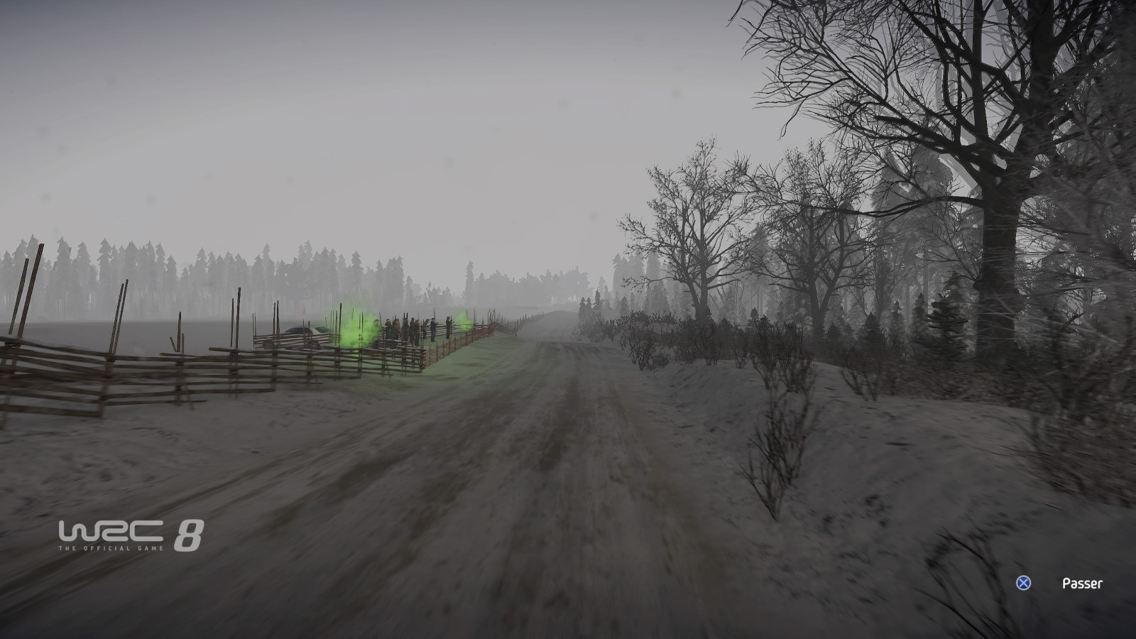 WRC8 PS4 Test 020
