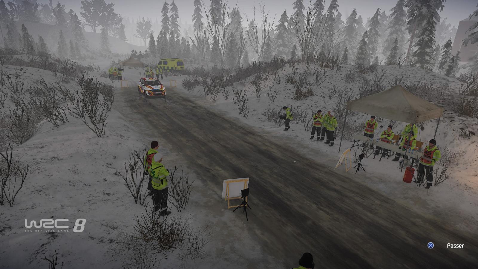 WRC8 PS4 Test 021