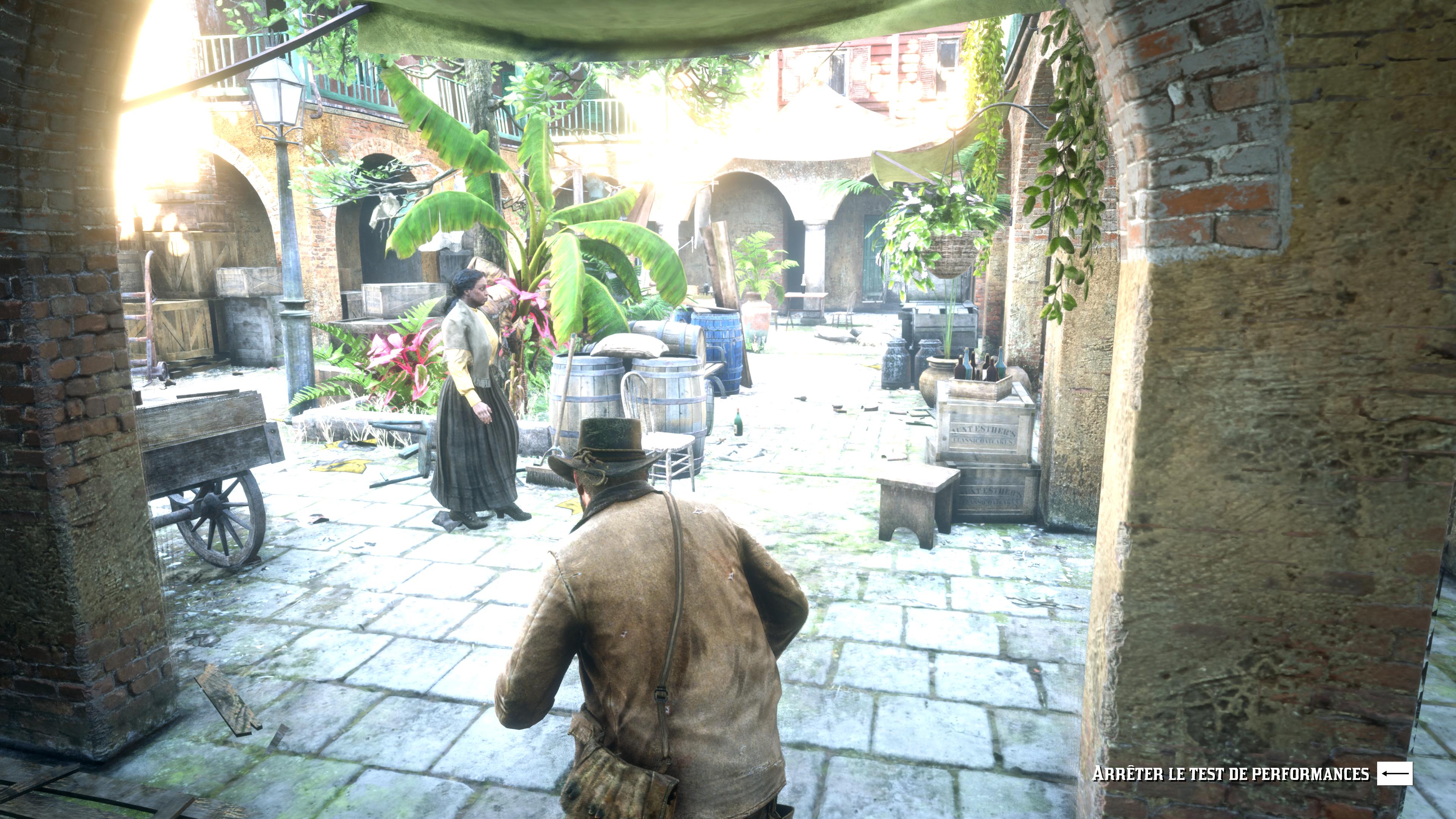 Red Dead Redemption II Screenshot 2019.11.05 - 16.03.22.47