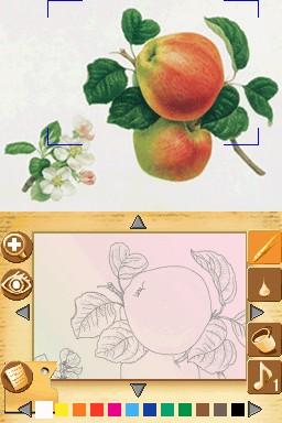 Paint By DS Edit 008