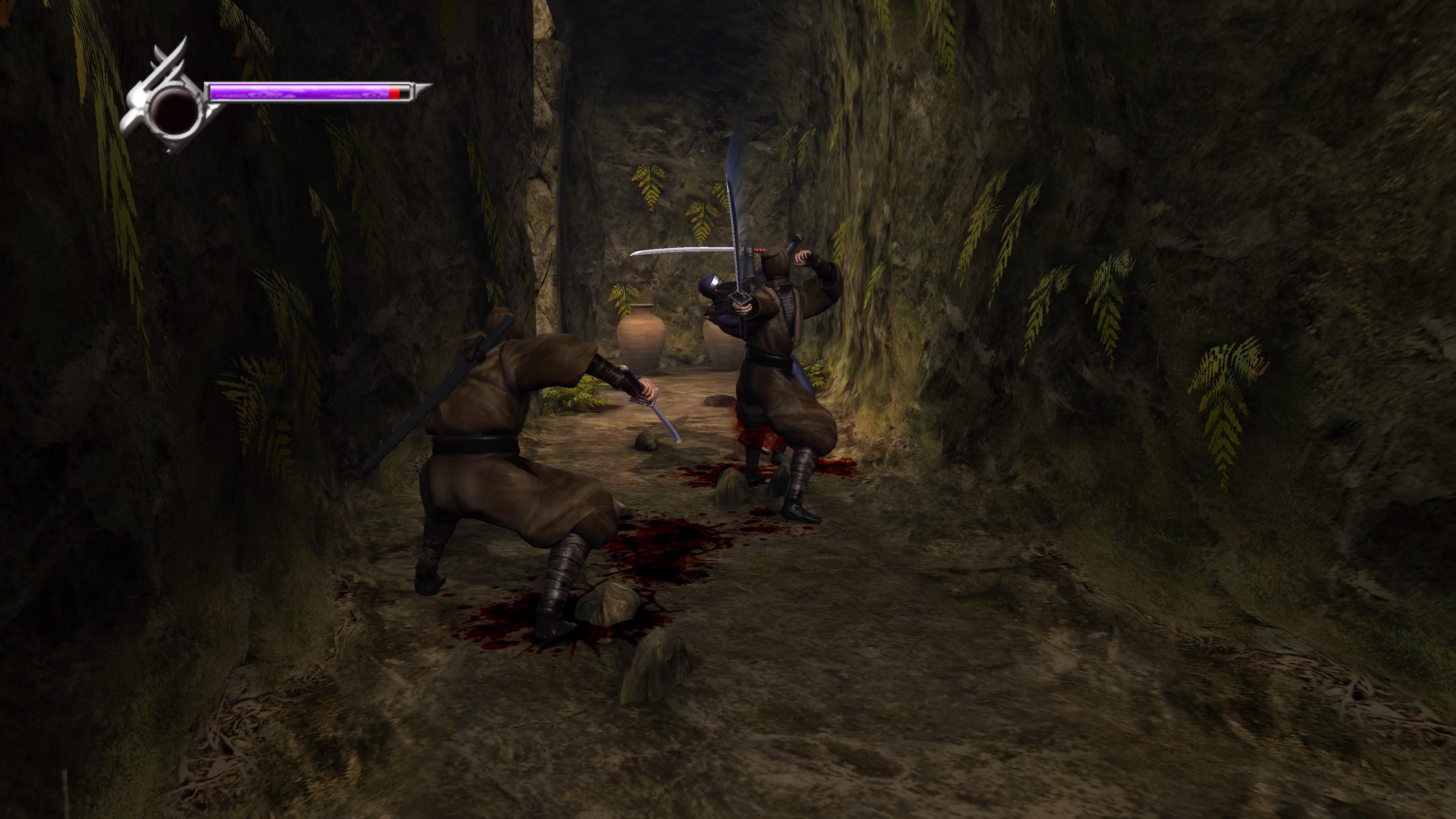 NinjaGaidenMasterCollection PS4 Test 005