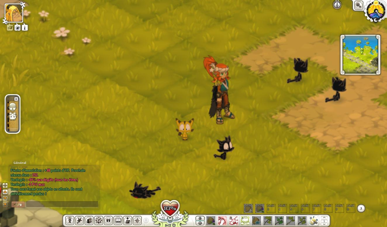 Wakfu Multi Test 011