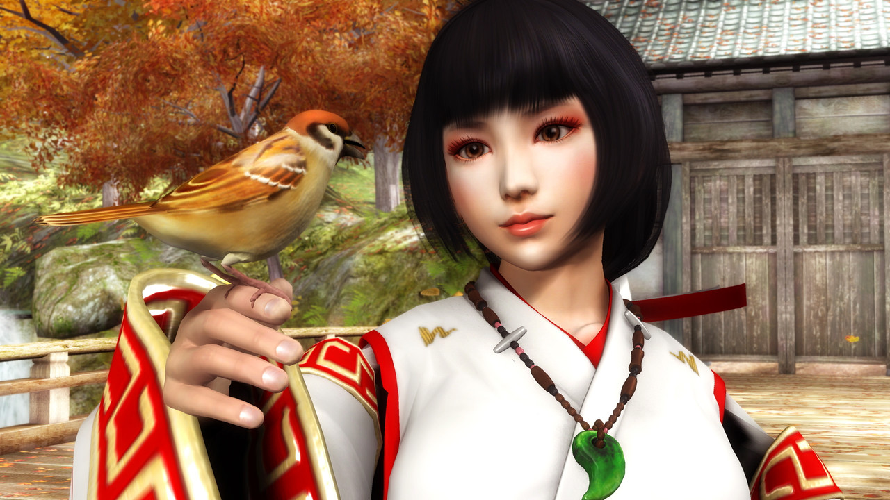 NinjaGaidenSigma PS3 Editeur 005