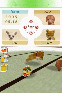 Nintendogs DS editeur 002