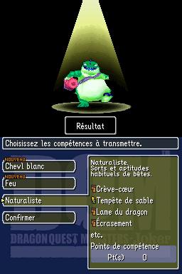 DQmonsterJ DS Editeur 020