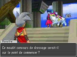 DQmonsterJ DS Editeur 029