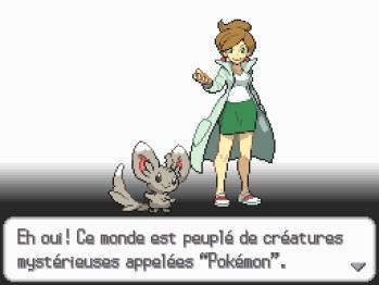 PokemonVersionNoire DS Editeur 075