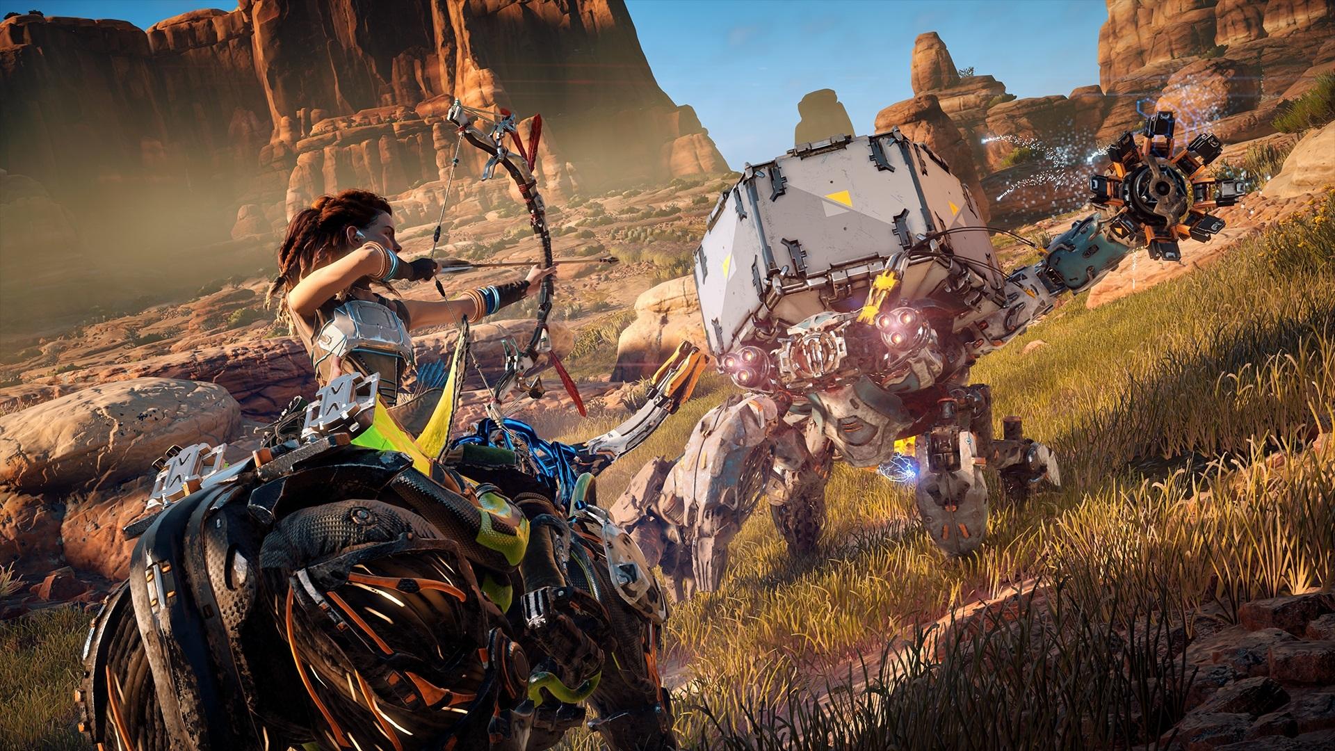 Horizon-ZeroDawn PS4 Editeur 041