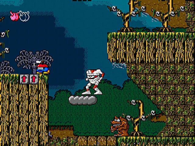 MegadriveCollec PS2 Editeur 009