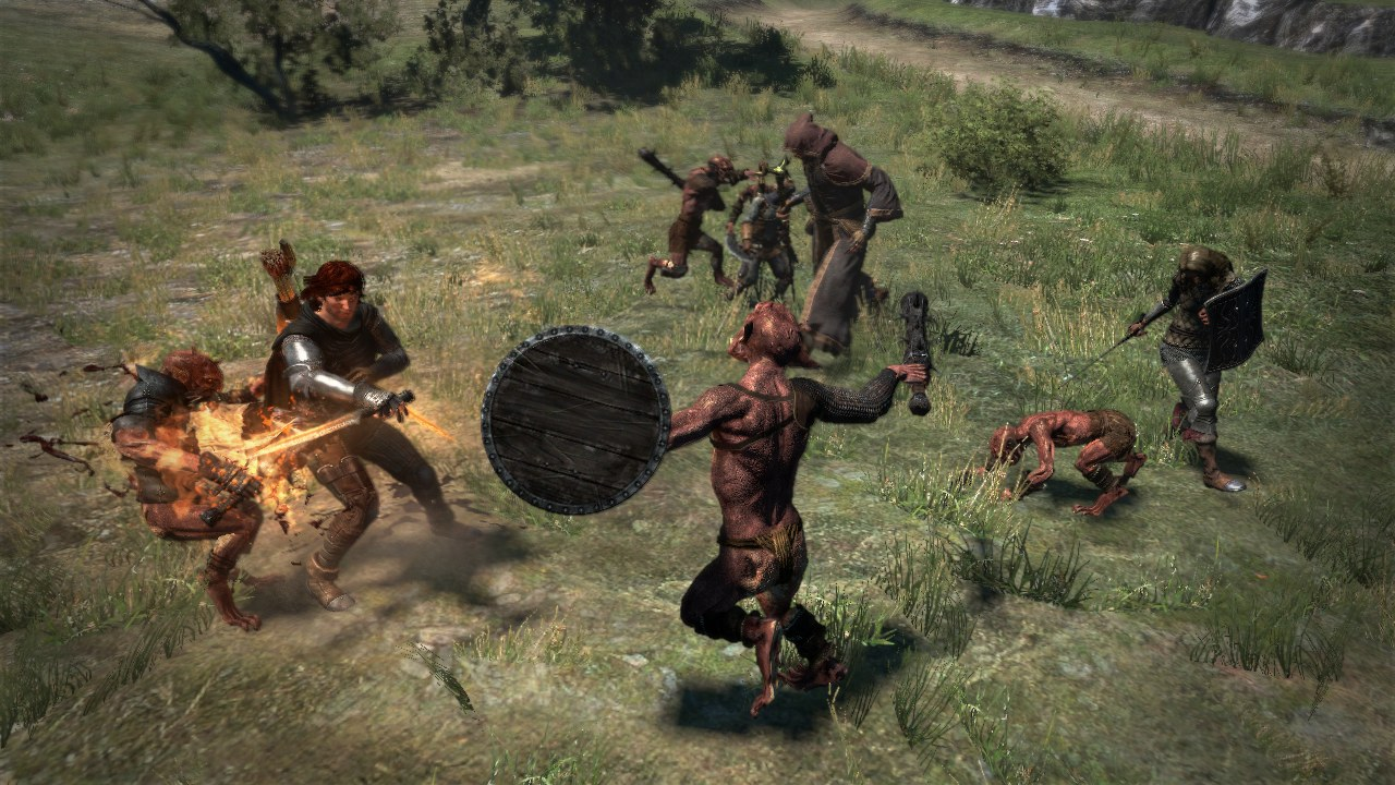 Dragon-sDogma Multi Editeur 007