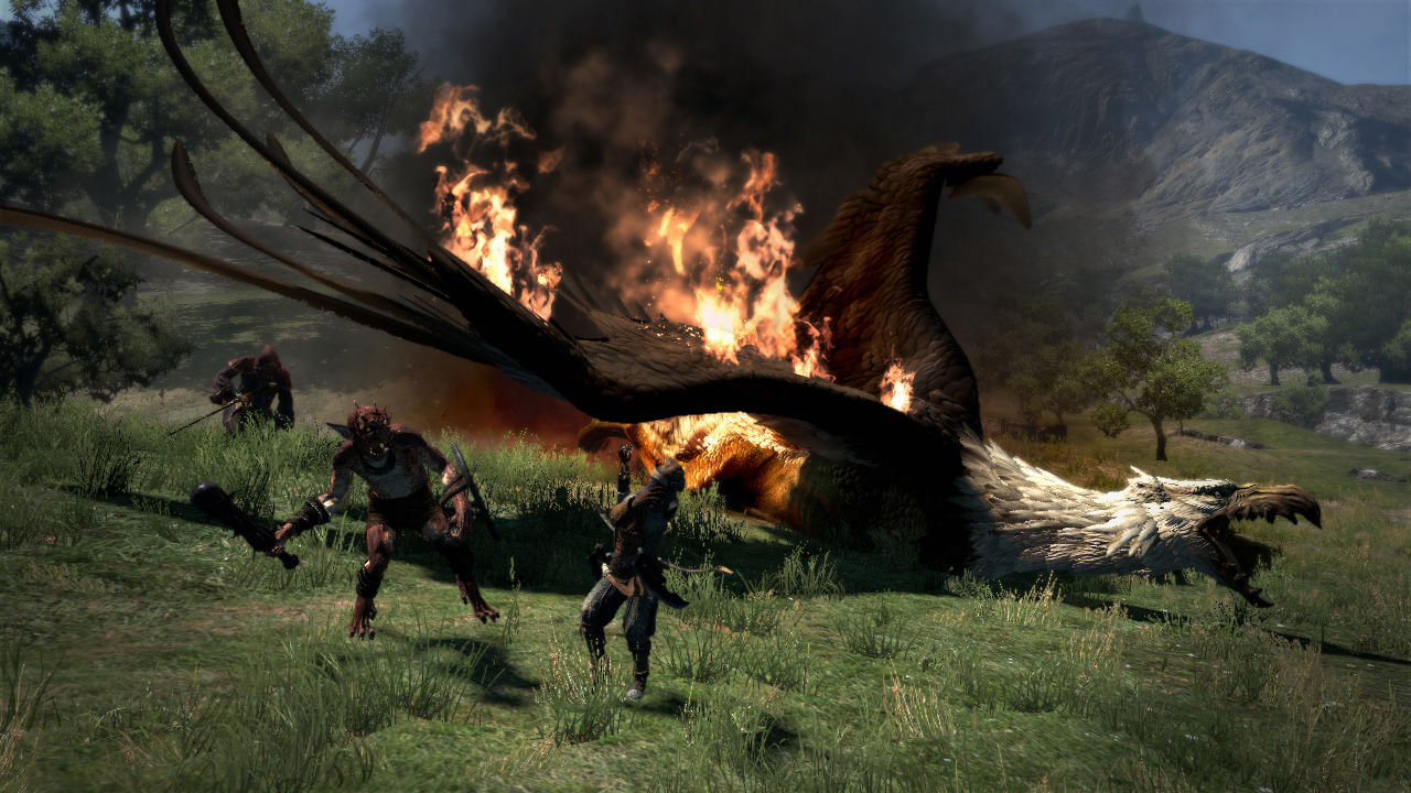 Dragon-sDogma Multi Editeur 035