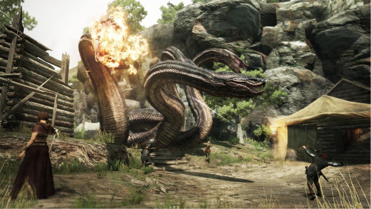 Dragon-sDogma 360 Editeur 031
