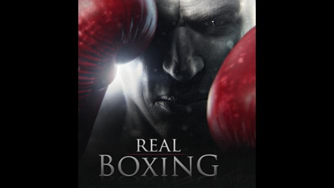 Image Real Boxing