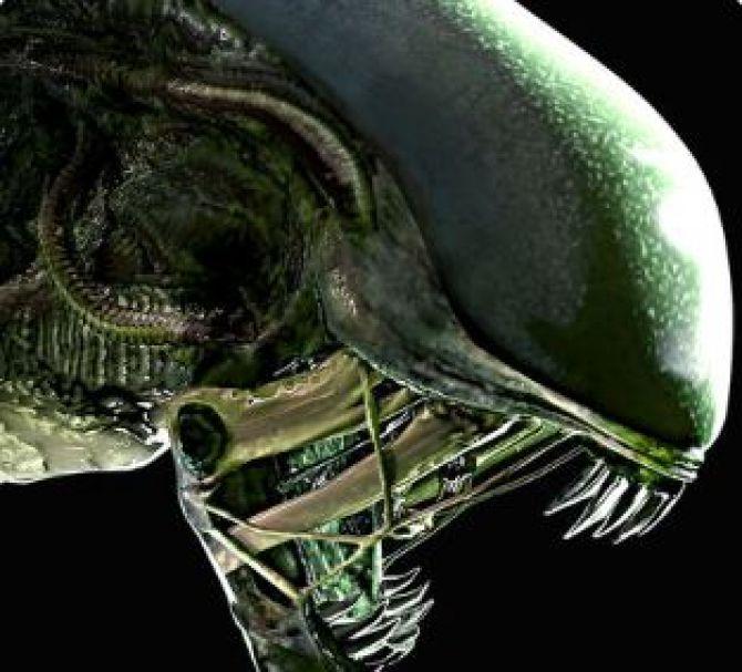 Image Alien : Blackout