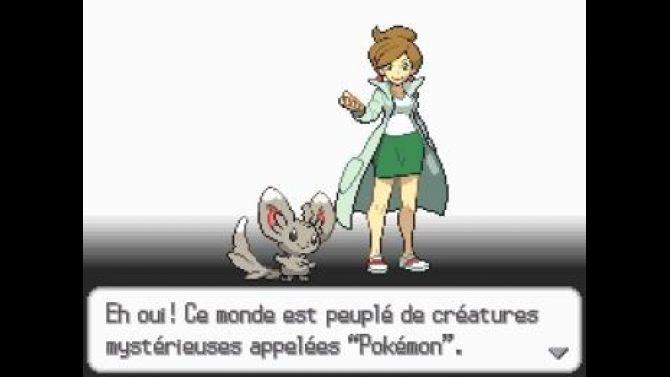 Image Pokémon Version Blanche